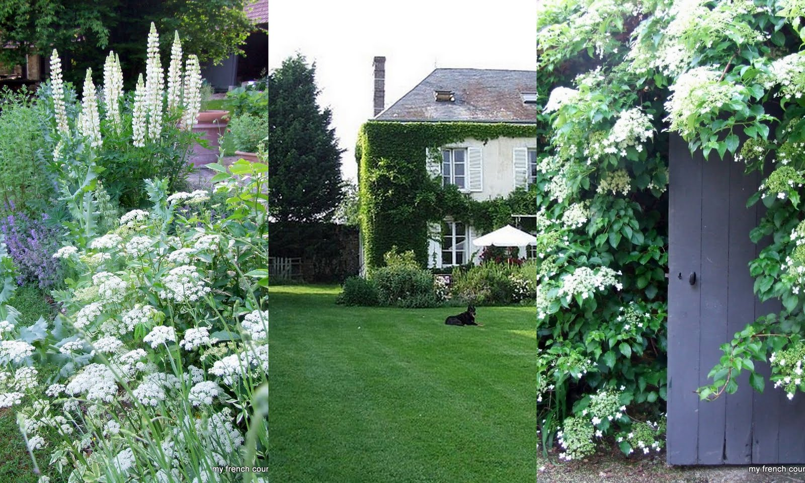 Our french country guest cottage the blog for French country house blog