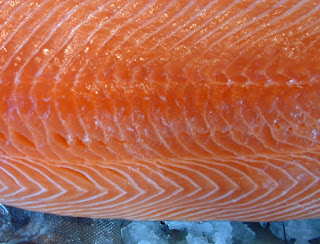 how to tell if fresh salmon is bad