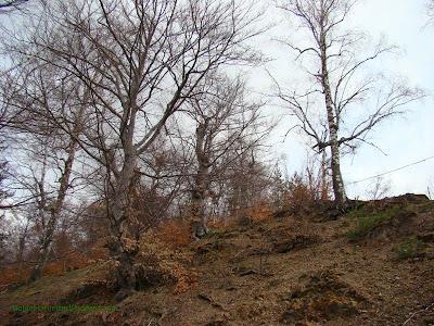 Околността над църкавата в село Чуйпетлово
