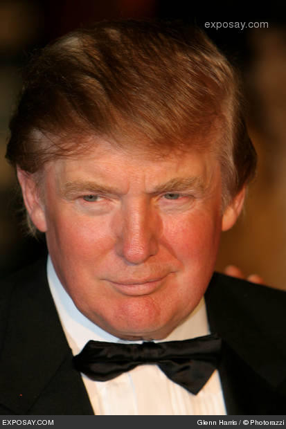 donald trump hair piece. Donald+trump+hair+piece