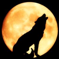 ¿Quién le teme al lobo feroz?