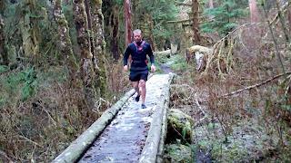 trail run hoh rainforest