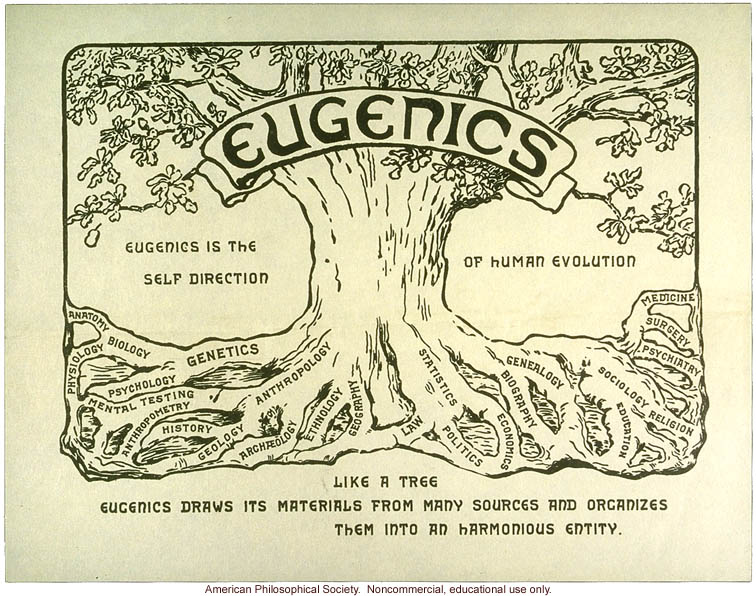 IMAGE(http://3.bp.blogspot.com/_YgSgFY90Vtc/TKWROz4IeAI/AAAAAAAAAAU/bbNYKREk4eE/s1600/233-Eugenics-tree-logo.jpg)