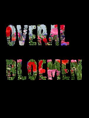 http://feedproxy.google.com/~r/blogspot/FoMq/~3/ikQqlZjhbE8/overal-bloemen.html