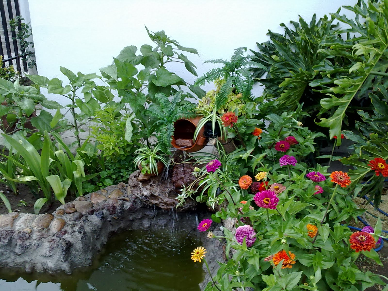 Jardines con flores finest festival de flores y jardines - Jardines con rosas ...