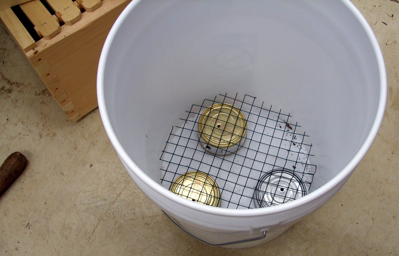 Living the Frugal Life: Potatoes in Buckets 2.0 (Finally!)