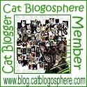 CB Member
