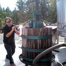 Marko making wine