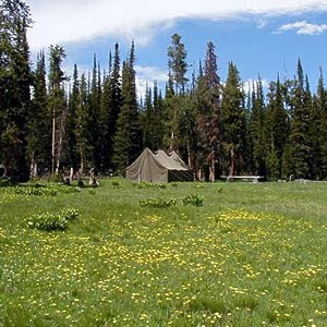Hidup ala koboi di Triple Peak Cow Camp, Wyoming, Amerika Serikat - www.jurukunci.net