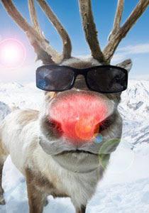 Der Neue. Rudolph-red-nose-reindeer-3