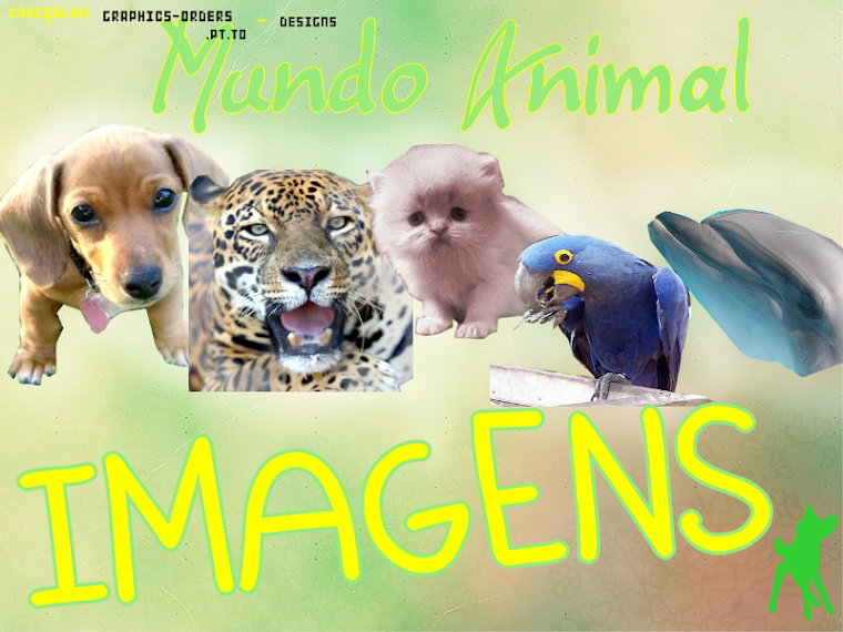 Mundo animal imagens