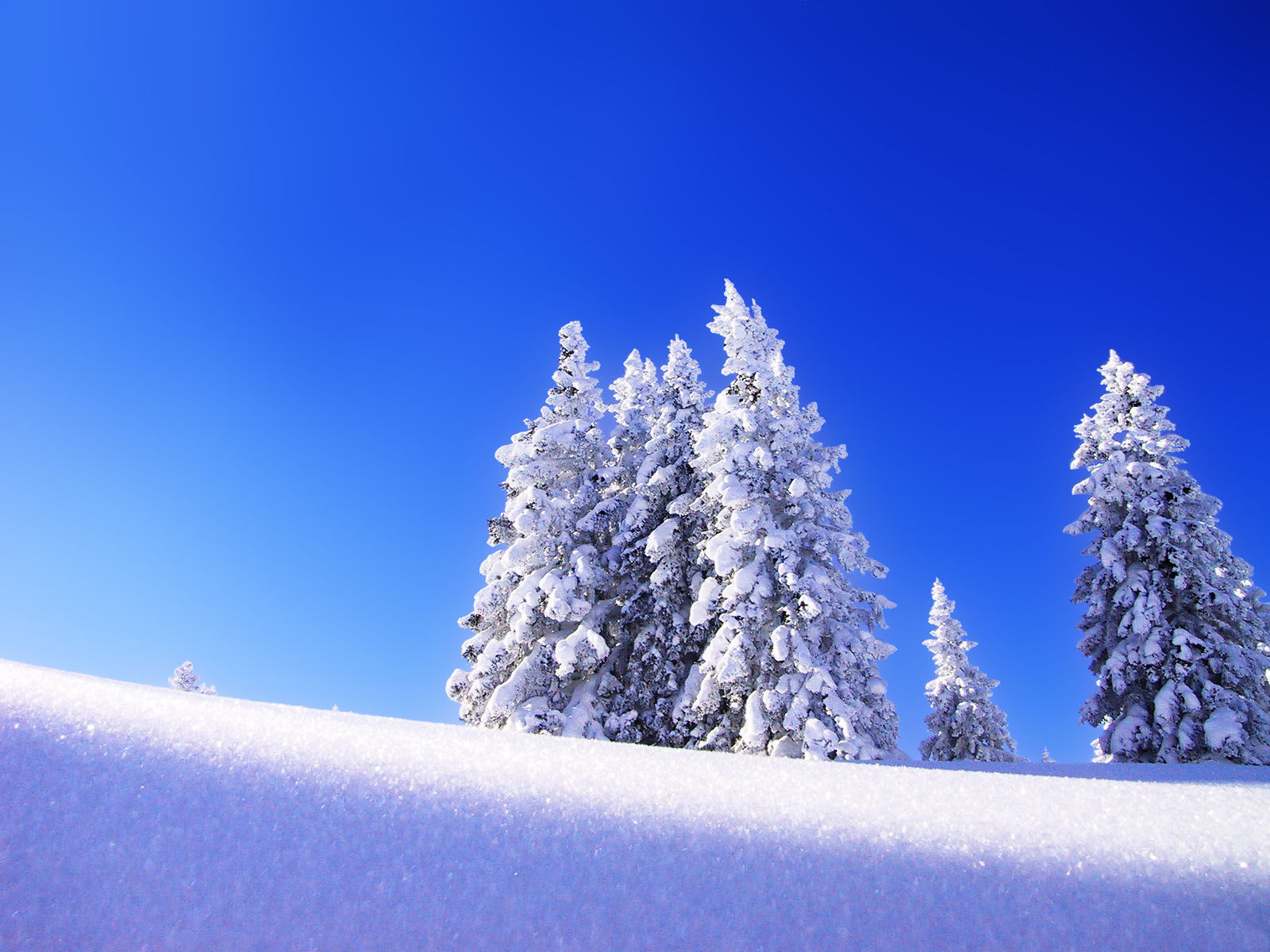for pc and Mac - Beautiful Winter Wallpapers Download a beautiful Download Winter Wallpapers