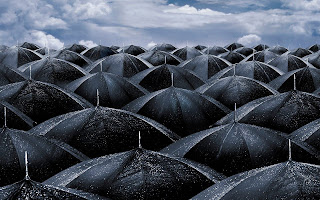 Black Umbrellas wallpaper and photo