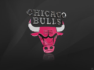 NBA Chicago Bulls Logo