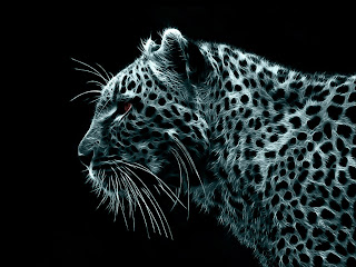 3D Leopard wallpaper