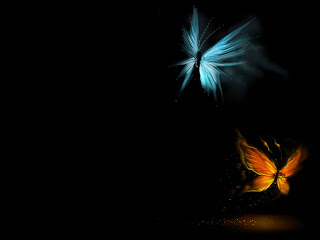 3D Butterfly With Black Screen Wallpaper