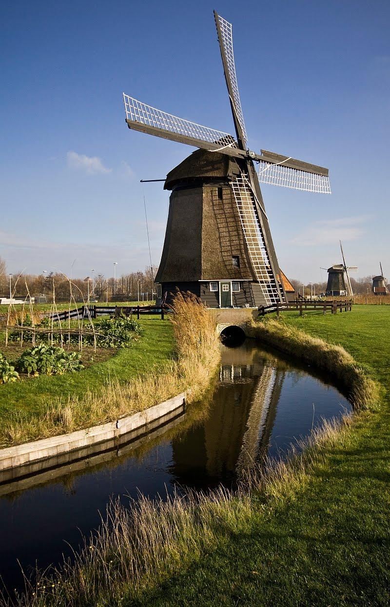 Canvas Of Light ~ Photography: Windmills