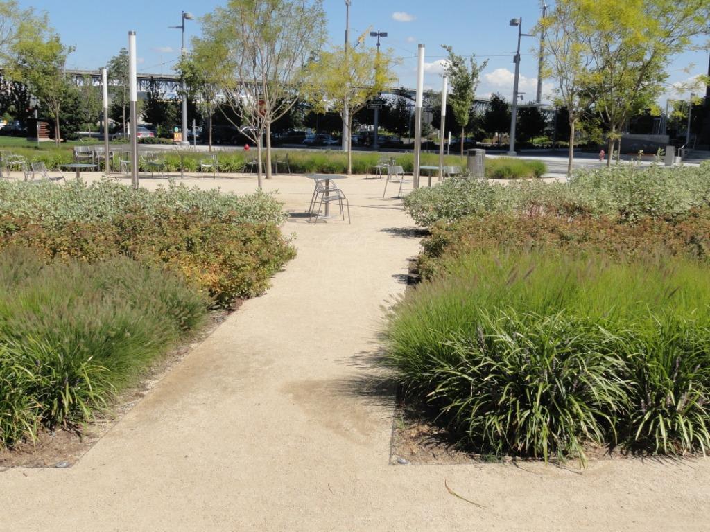 Landscape Urbanism Elizabeth Caruthers Park