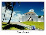 Forte da Ponta do Humaitá
