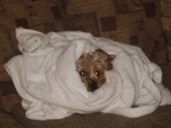 i'm cold and tired - leave me alone!!