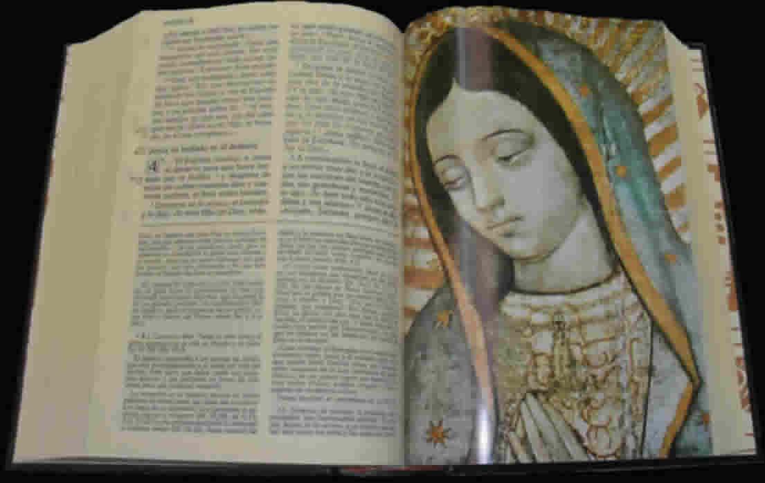 http://3.bp.blogspot.com/_YogfFmKNjXU/TGzRaSYfLYI/AAAAAAAAANE/Jyf9P5AK2UU/s1600/biblia-abierta.jpg