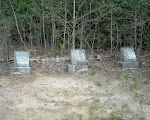 Graves of Clayborn, Merty, and Neasey Butler