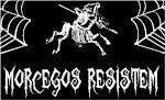 Morcegos Resistem