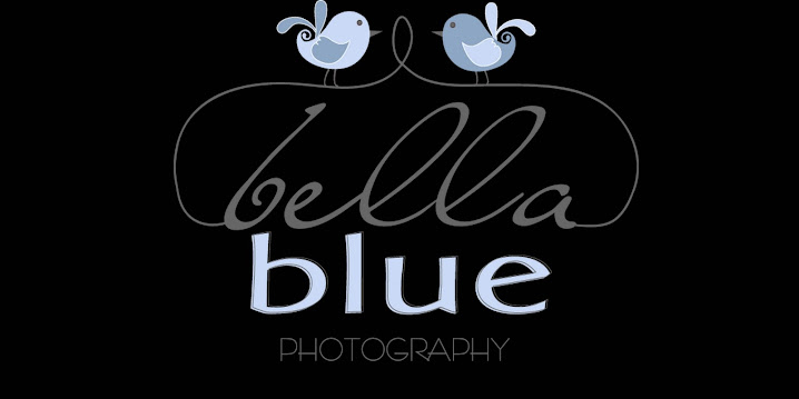 bella blue photography blog