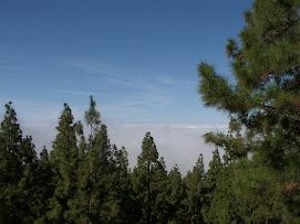 Au dessus des nuages!