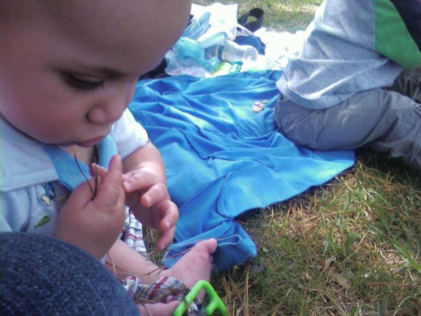 [picnic1.jpg]