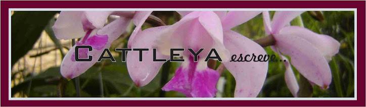 Cattleya escreve...