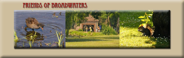 Friends of Broadwaters