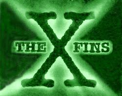 X-FINS