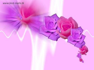 Beautiful Flower Wallpapers 3   Best Mails