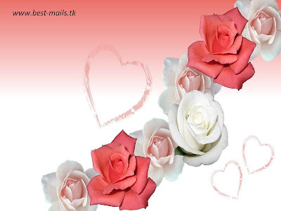 Beautiful Flower Wallpapers 5   Best Mails