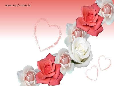 Beautiful Flower Wallpapers 5   Best Mails