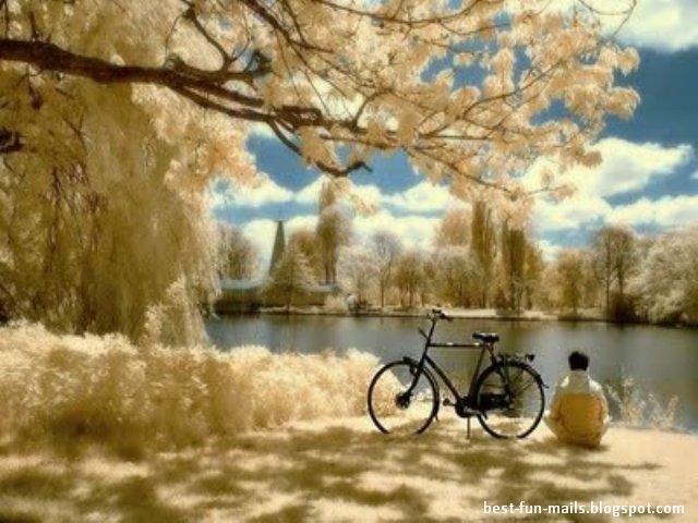 Scenes Of Nature. x Images+of+nature+scenes