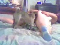 Mulher Gorda dando Buceta pro Cachorro