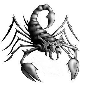 Scorpion Cultural Symbolism | RM.