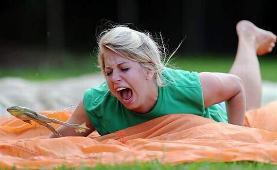 http://3.bp.blogspot.com/_YyXZ9LFygq0/THyjDV-veMI/AAAAAAAAApI/iIfYmozbXYI/s1600/jumping-frogs03.jpg
