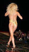 Pamela Anderson in bikini