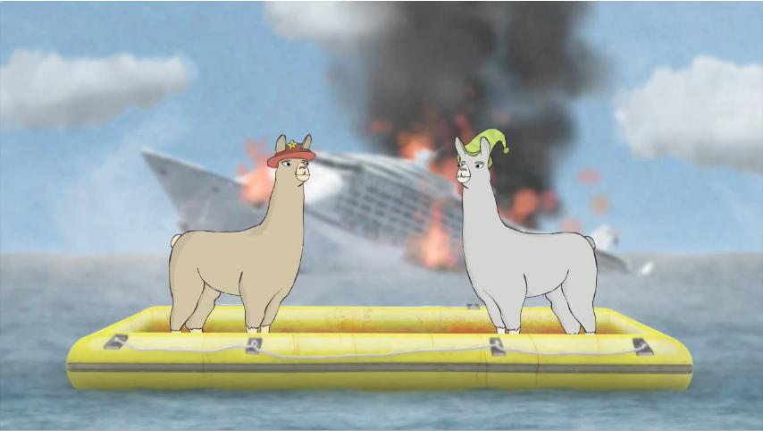 Pin llamas with hats carl that on pinterest