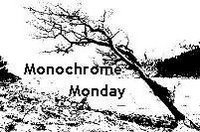 [monochrome+mondays]