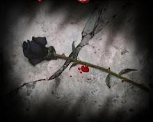 Me encantan las Rosas Negras