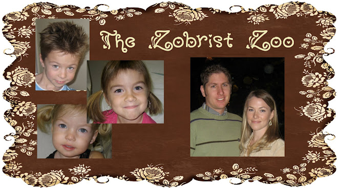 The Zobrist Zoo