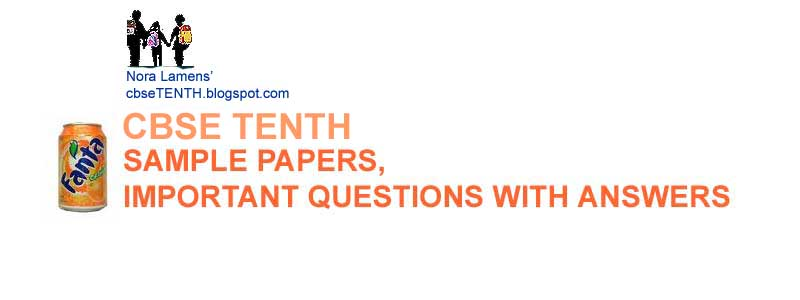 CBSE 2010 GUESS PAPERS QUESTION BANK SAMPLE PAPERS