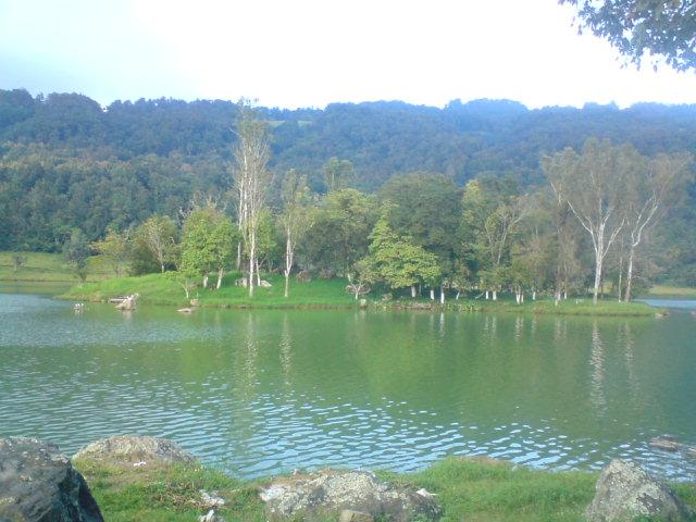 CIENCIAS, FISICA