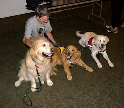 The 3 beautiful dogs above are associated with the Guide Dogs of America