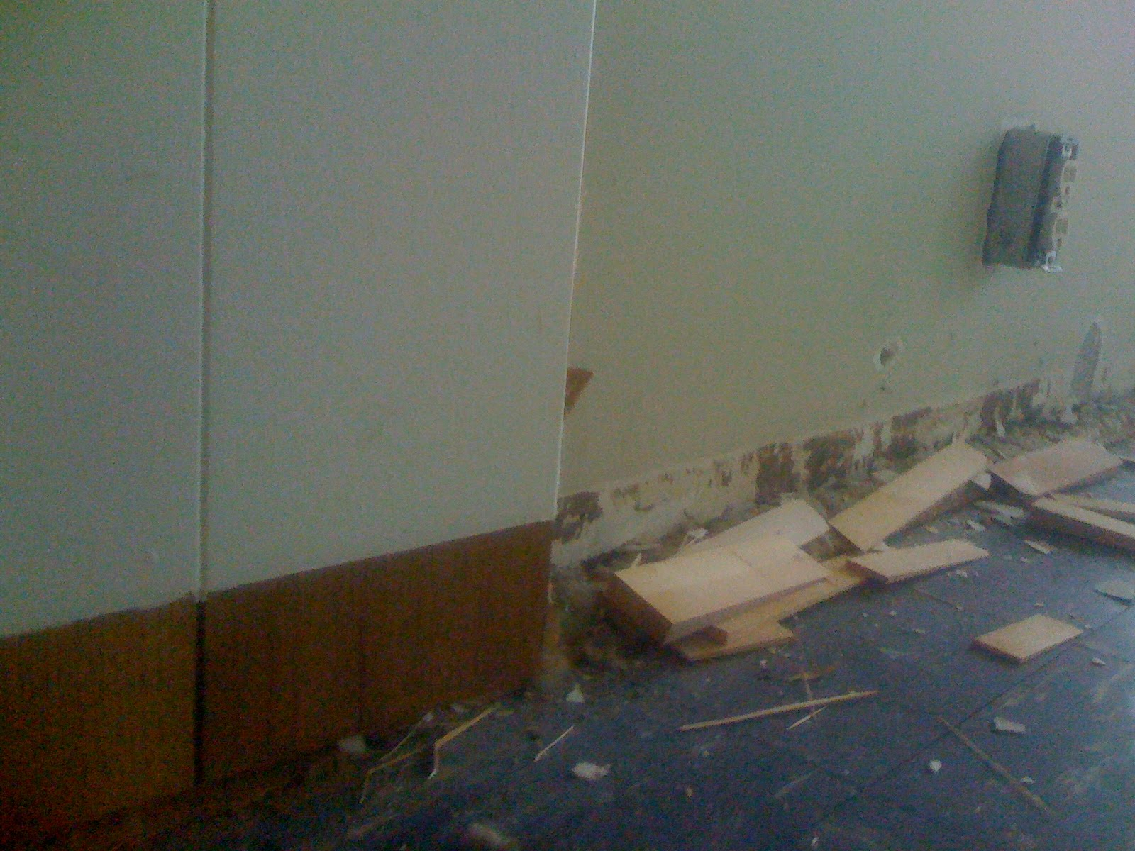 Who puts wood paneling on a Mies?!