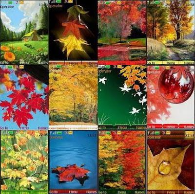 Download Tema Nokia 5300 Wallpaper